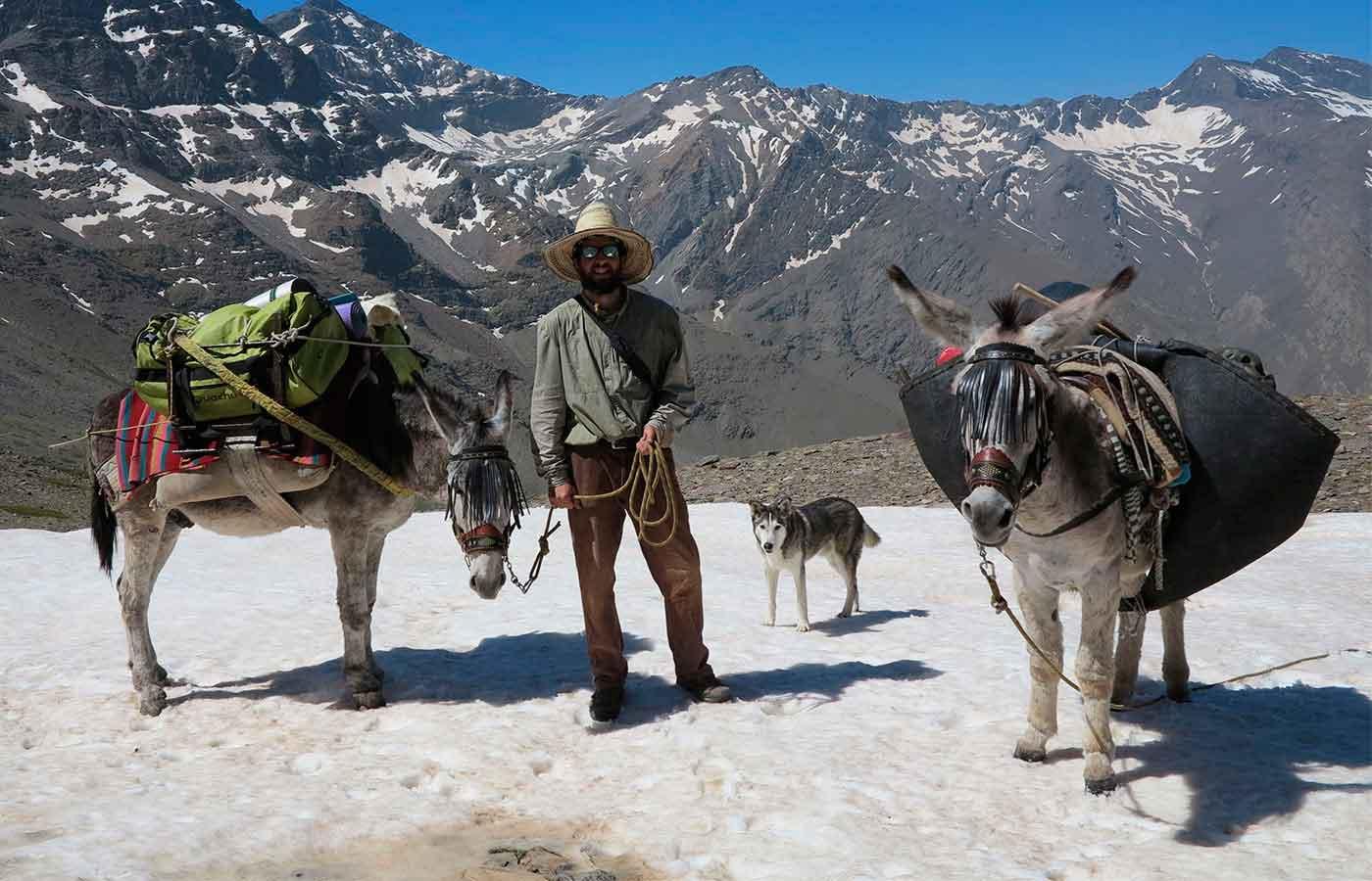 el arriero_Sierra Nevada_ burros y montaña